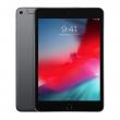 iPad mini (2019) 256Gb Wi-Fi Space Grey (MUU32RU/A)